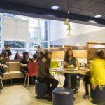 Café promove inclusão social e geração de renda a nanoprodutores