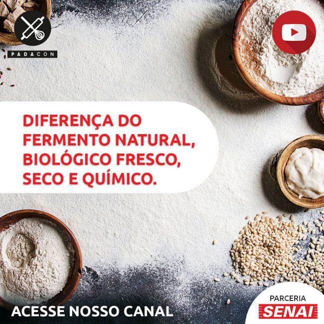 Diferença entre fermento natural, fermento biológico fresco e seco